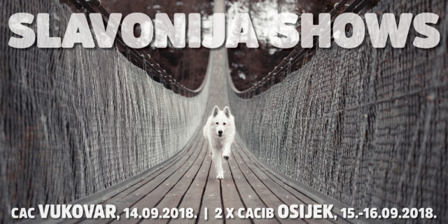 SLAVONIJA DOG SHOWS