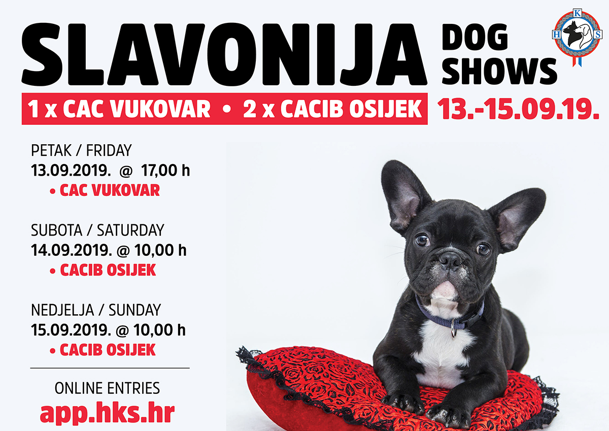 SLAVONIJA DOG SHOWS